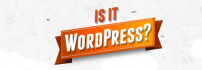 Bu Site WordPress mi ?