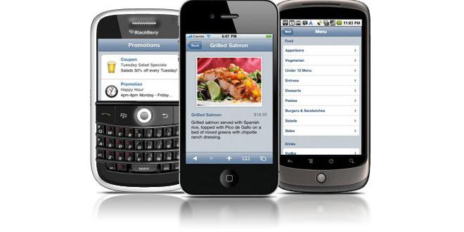 sitem mobilde nasıl görünüyor