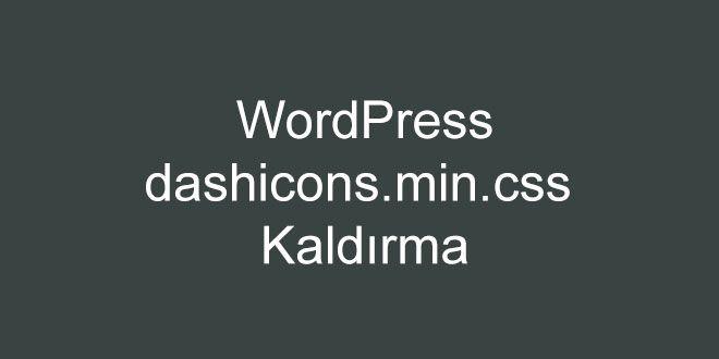 WordPress dashicons.min.css Kaldırma